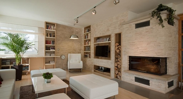 Stone in Living Room